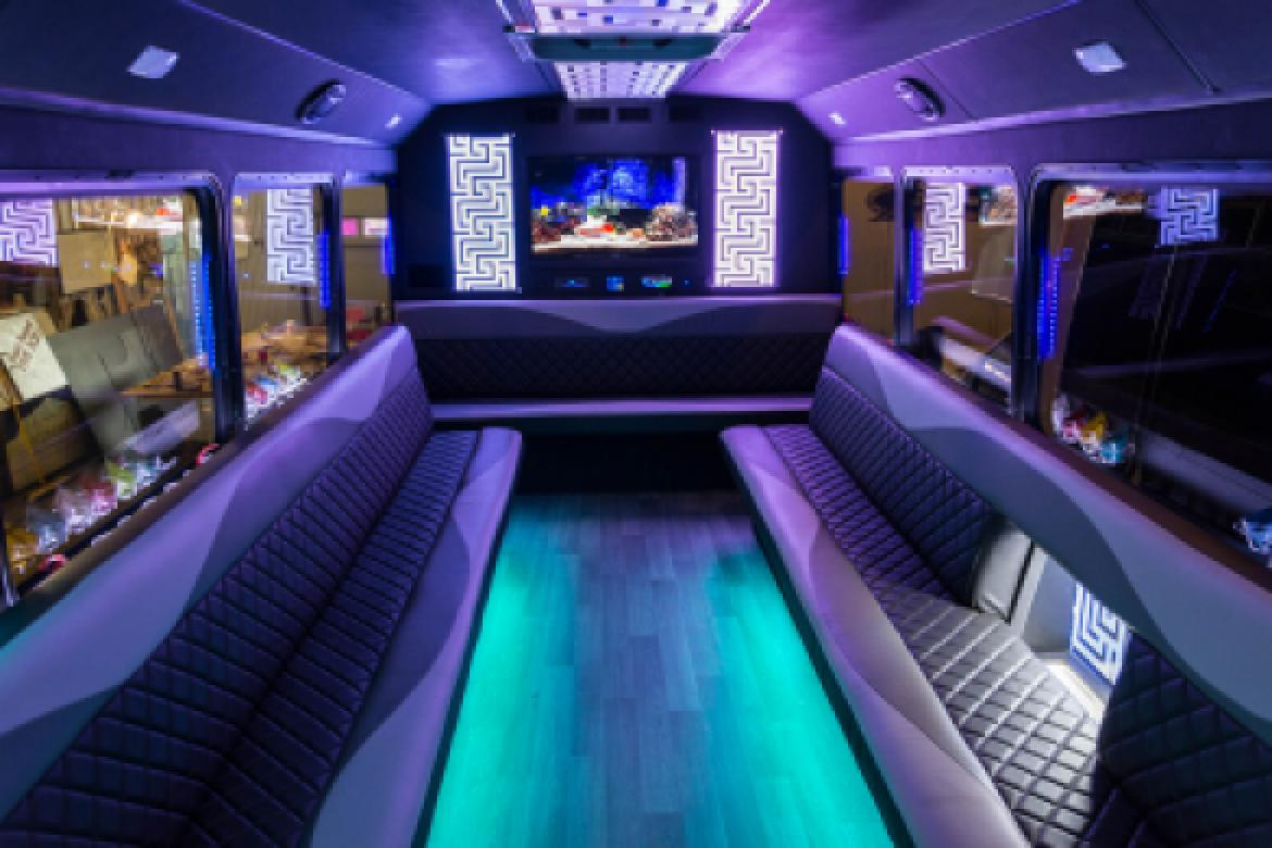 Limo Bus for sale: 2017 Ford E450