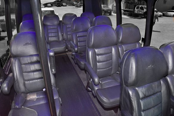 Ford Passenger Van For Sale >> Used 2008 Ford E-350 for sale #WS-10530 | We Sell Limos