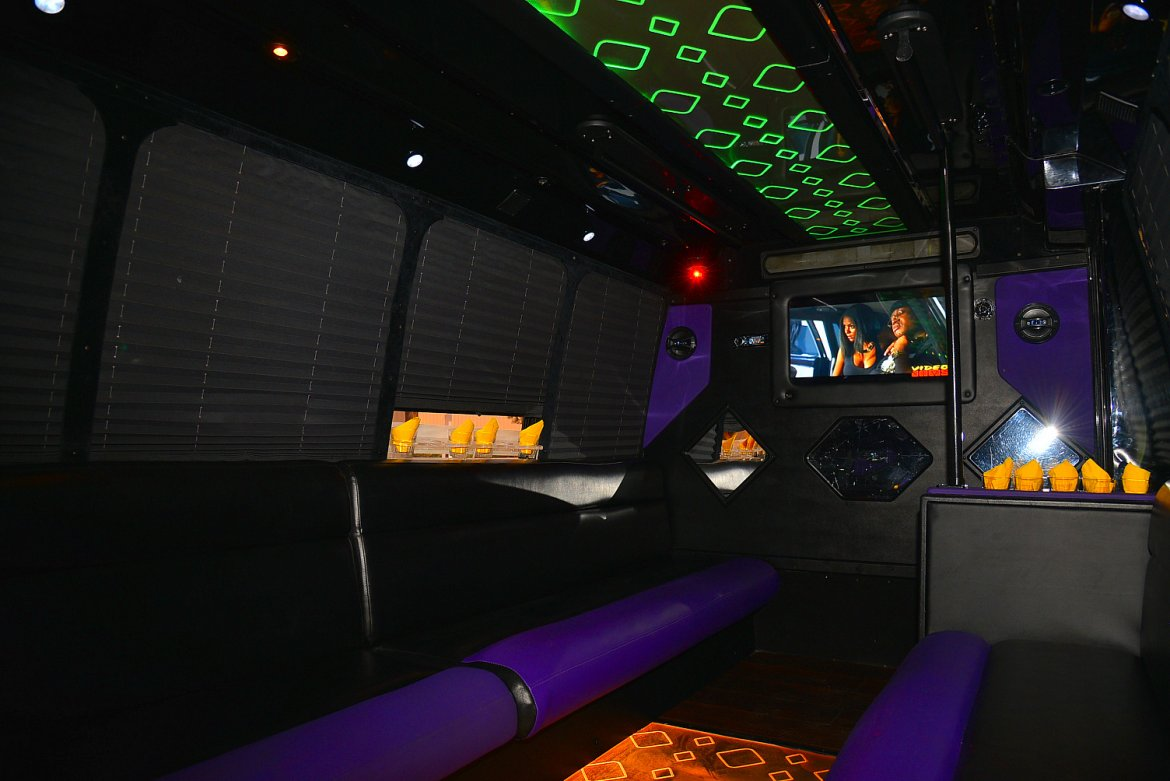 Photo of Limo Bus for sale: 2006 Ford E-450 by Federal