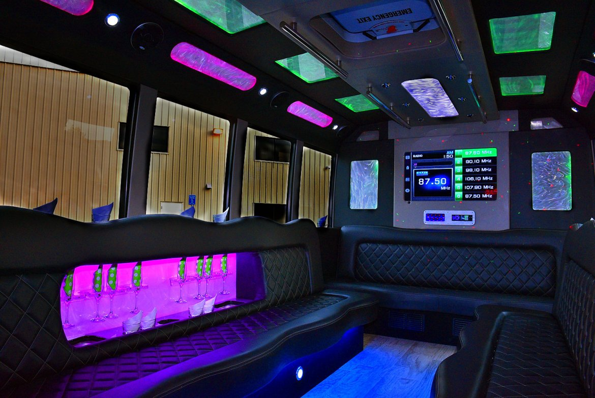 Photo of Limo Bus for sale: 2011 Ford E-450 by Tiffany